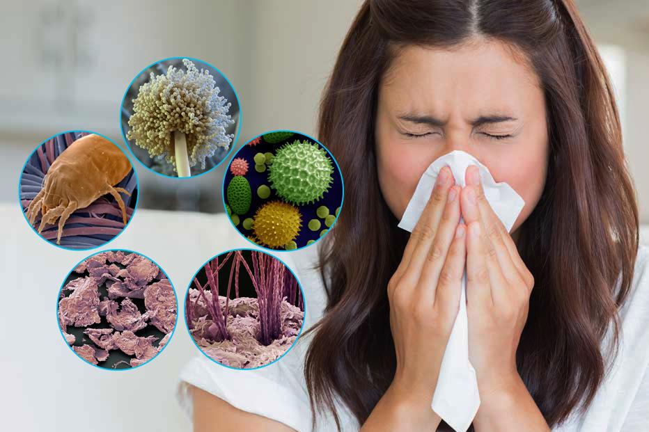 Уборка для аллергиков